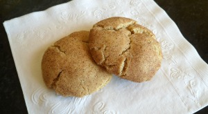 Becca's Book, Serial #4 and Chewy Snickerdoodle Cookies