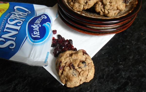oatmeal craisin cookie
