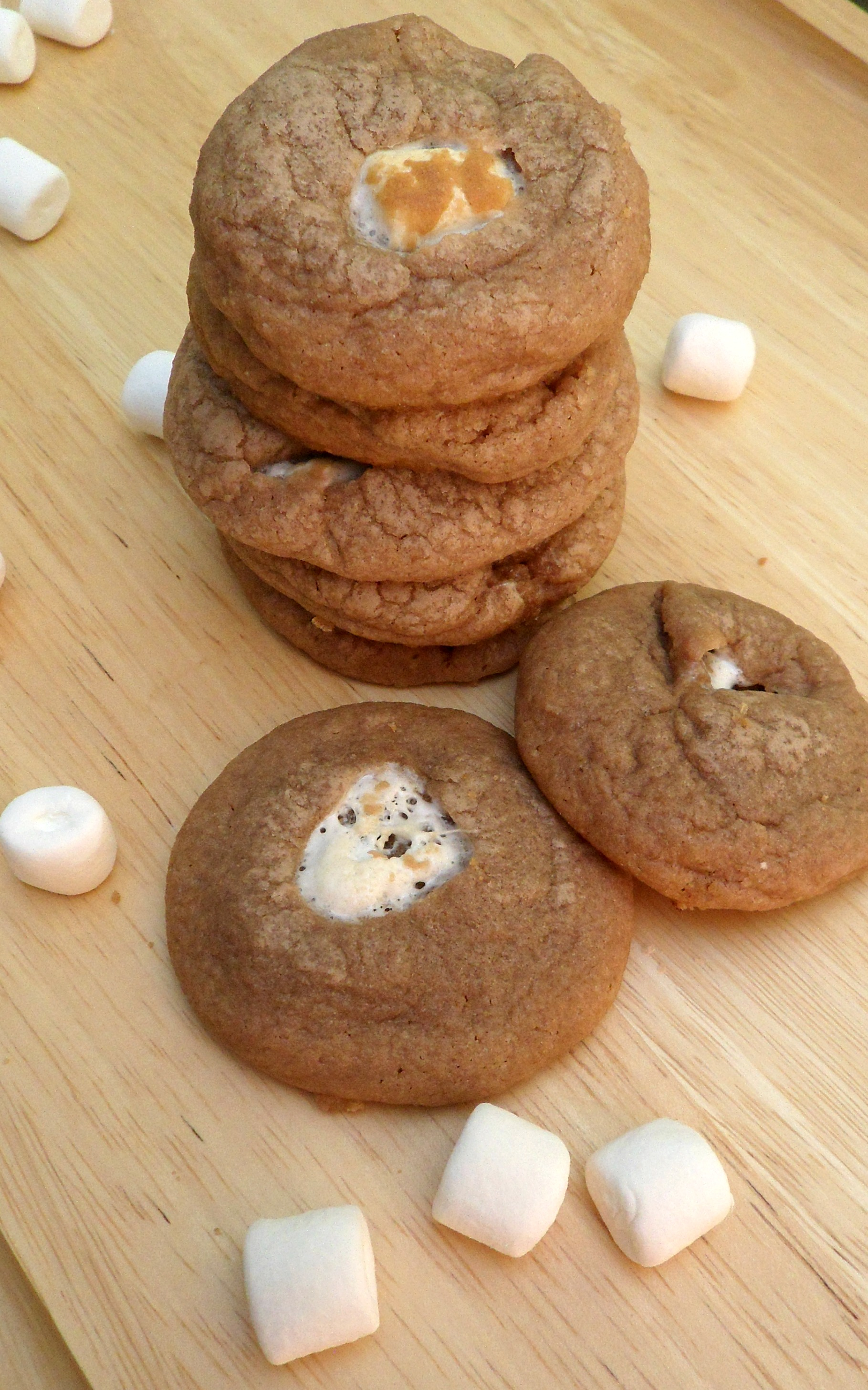 Christmas Day, Part I and Hot Chocolate Cookies   Reading and Recipes